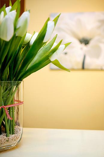 Fotostrecke Unternehmen - Tulpen
